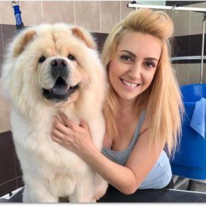 dog_grooming_glyfada_021