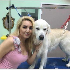 dog_grooming_glyfada_026